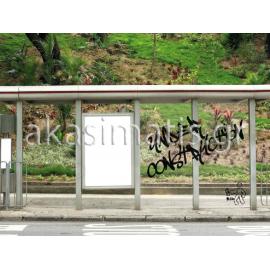 Μεμβράνη  Anti-grafitti